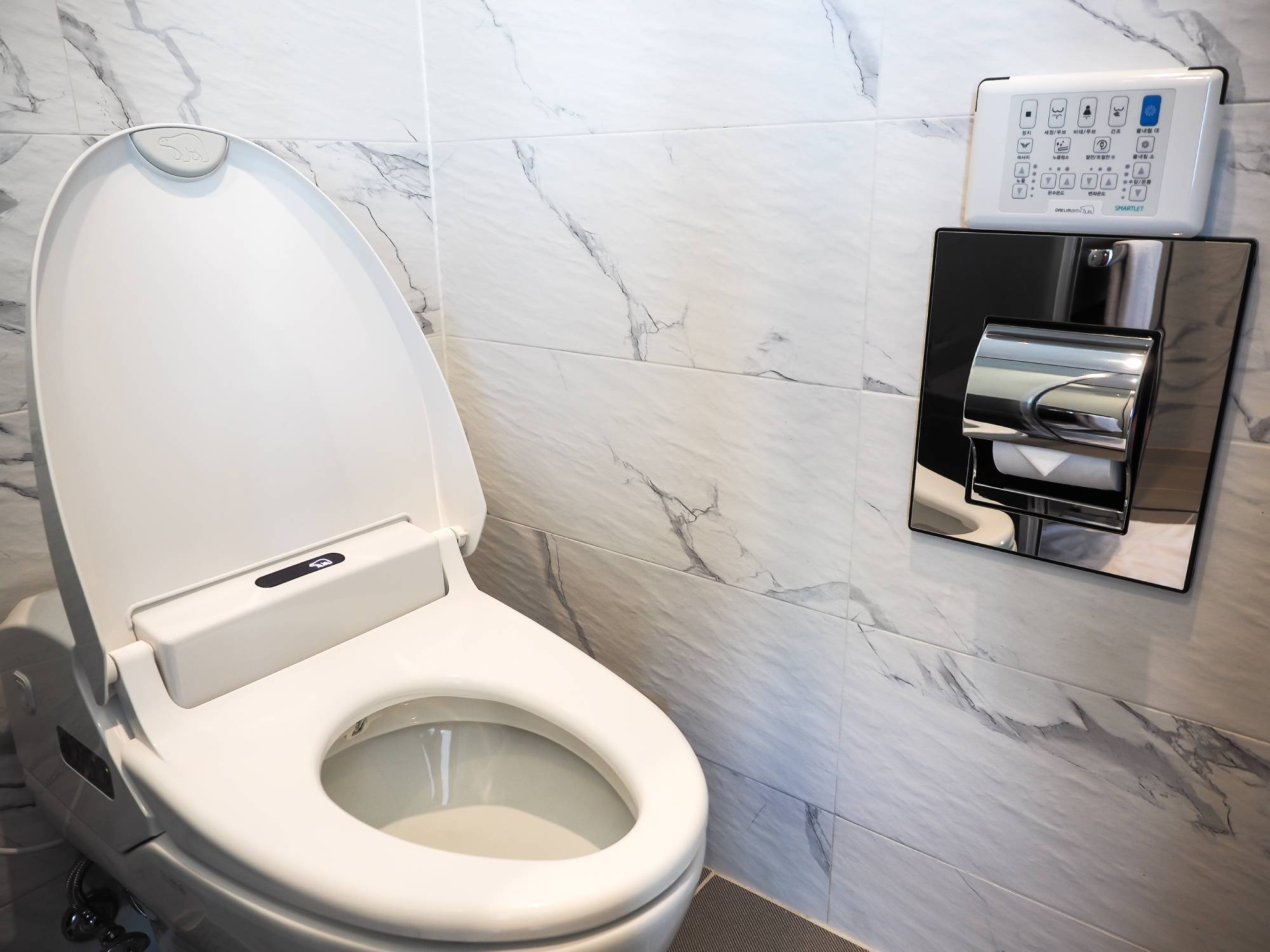 If you haven't tried one of these Japanese-style toilets, your life isn't complete.