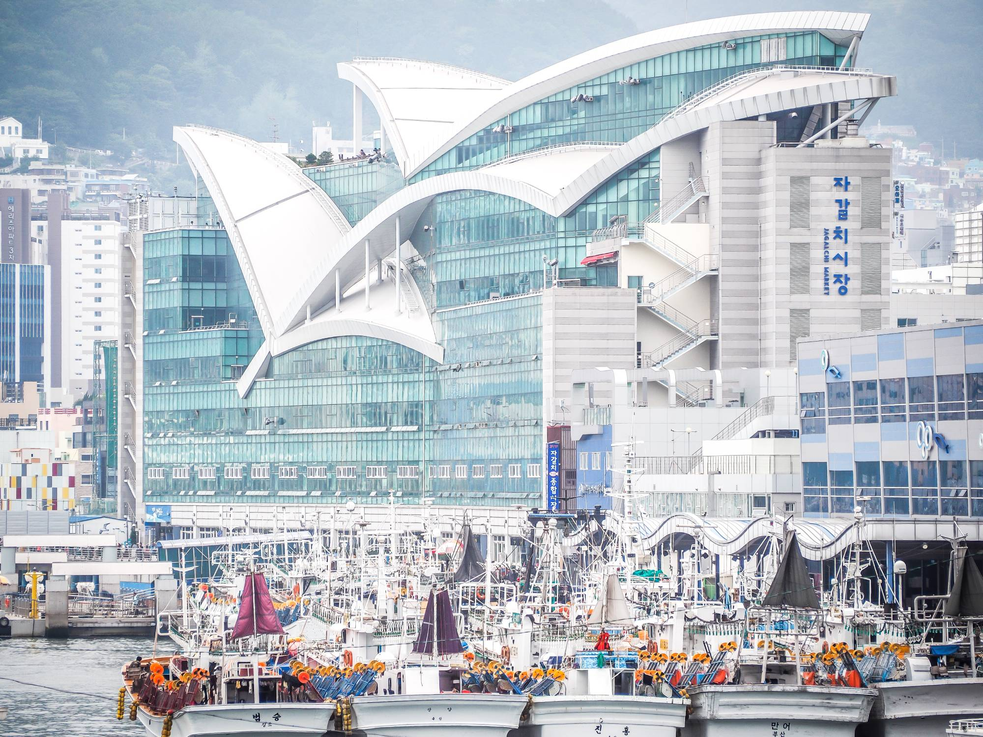 Jagalchi Fish Market, one of Busan's most popular sights, the way I saw it while walking across Yeongdo Bridge to reach the hotel every day. (Busan traditional market)